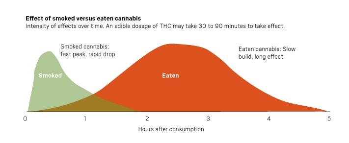 Effect of smoked versus eaten cannabis
