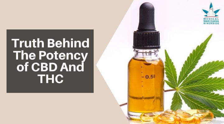 Uncovering the Truth Behind The Potency of CBD And THC