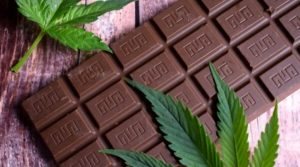 Medical marijuana doctors answer your questions about CBD chocolate