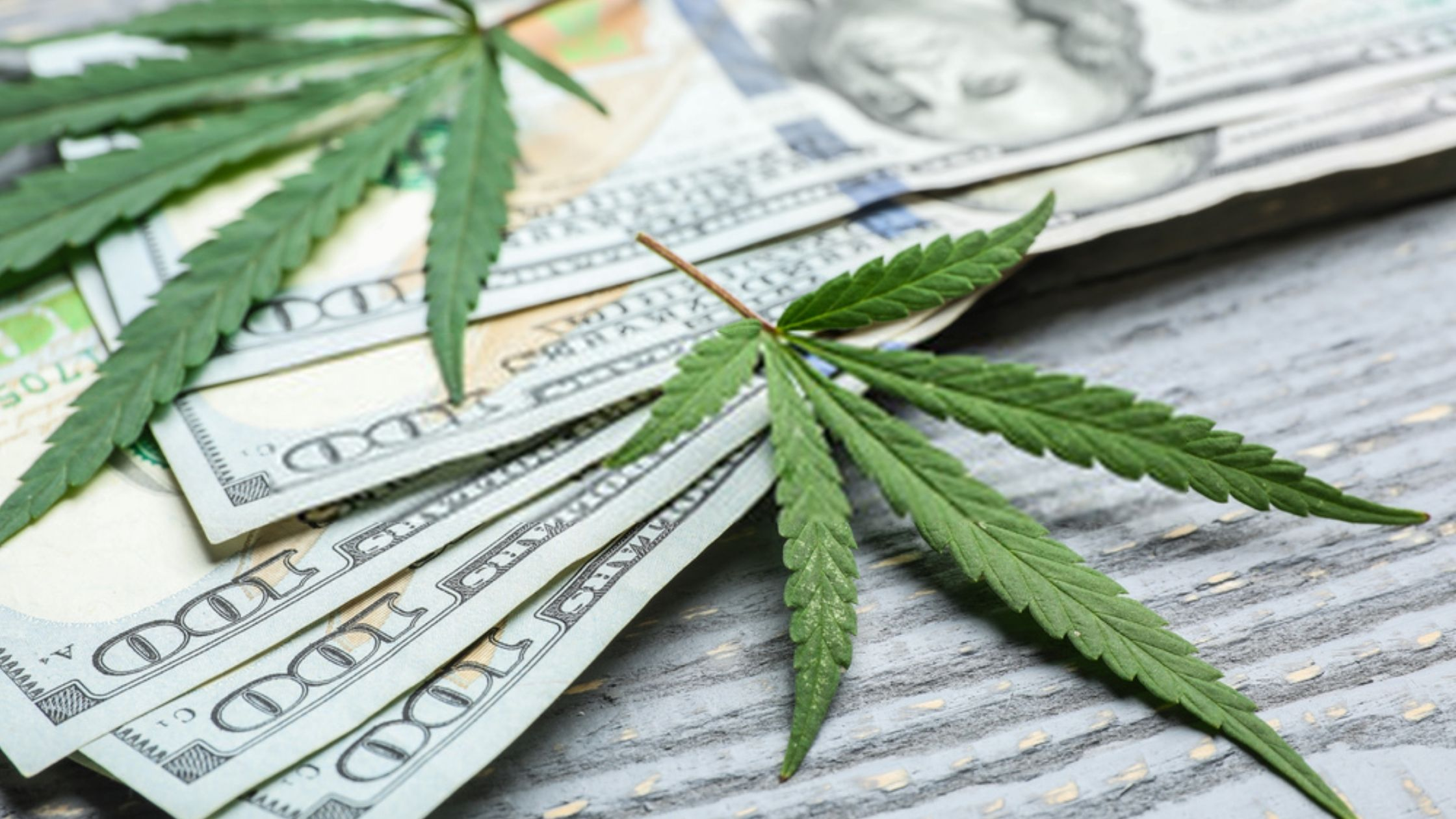 Money With Cannabis